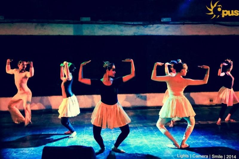 Wild Flower choreographed by Vishwakiran Nambi